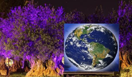 Giornata Mondiale della Terra 2021